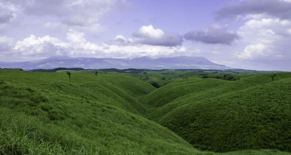 阿蘇の草原